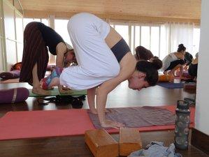 10 Day 100-Hour Emotional Blockage Treatment and Yoga Teacher Training in Rishikesh