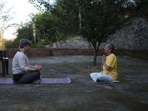 6 Days Luxury Gentle Yoga Retreat in India