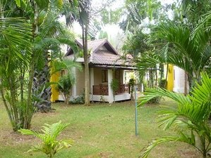 6  jours en retraite de yoga spirituelle à Koh Samui, Thaïlande