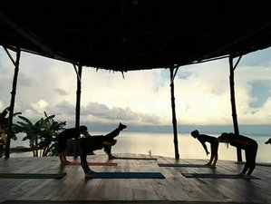 7 Day Diving and Yoga Holiday in Kudat, Sabah