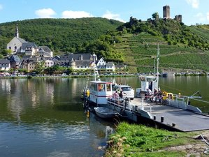 7 Days Moselle Trail Bike Tour in Rhineland-Palatinate, Germany