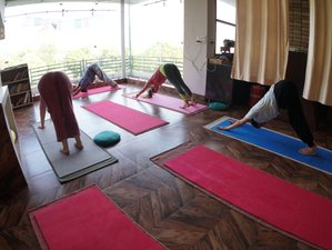 30 Day De-addiction Program, Naturopathy, Detox and Yoga Retreat in Sidhbari, Dharmshala
