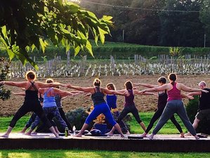 6 Day Meditation and Yoga Retreat in Monein