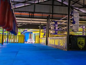 3 Days Thailand Boxing and Muay Thai Camp in Phuket