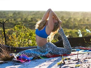 3 Days Fluidity Eco Yoga and Surf Camp in Porto Beach Paradise, Portugal