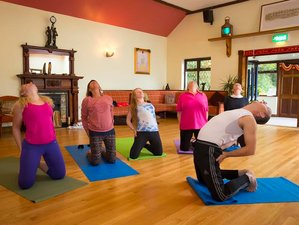 3-Daagse Mindfulness en Yoga Retraite in Ierland