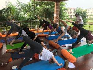 35 Day 300 Hours of Holistic Advanced Yoga Teacher Training in Rishikesh
