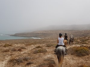 6 Day Loop of Ifthane Horse Riding Tour in Morocco