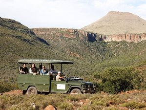 4 Days Exciting Eastern Cape Safari South Africa
