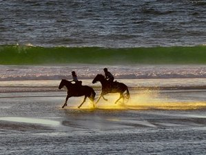 8 Day Adults Only Horse Riding Tour in Perigord and Atlantic Coast, France