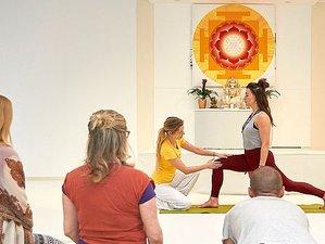 4 Wochen 346-UE Intensive Online Yogalehrer Ausbildung