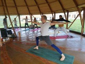7 Day Yoga Medicine Vol.3 Yoga Retreat in Banya, Burgas