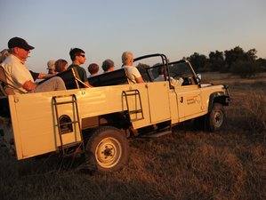 3 Days Safari in South Luangwa National Park, Zambia