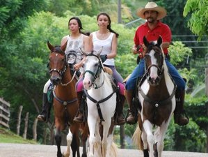 8 Day Ride for Life Horse Riding Holiday with Natural Horsemanship Clinic in Santa Cruz, Guanacaste