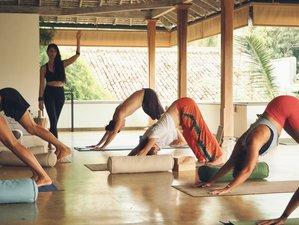 21 Tage 200-Stunden Immersive Yogalehrer Ausbildung in Tulum, Quintana Roo