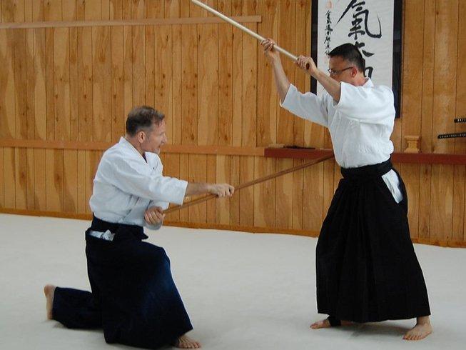 5 Days Summer Intensive Aikido Seminar in Washington DC, USA