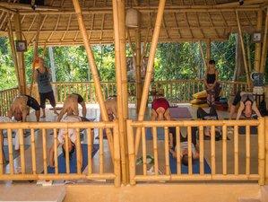 17 Tage 200-Stunden Yogalehrer Ausbildung in Badung, Bali