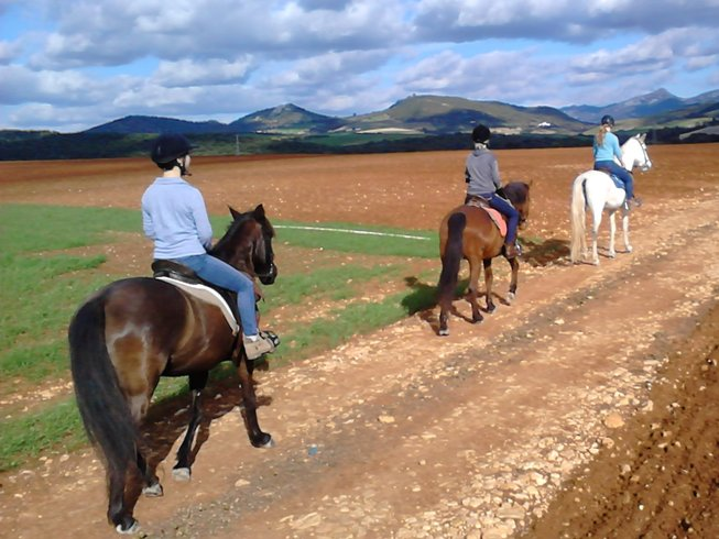 7 Days Horse Riding and Yoga Holiday in Andalusia, Spain