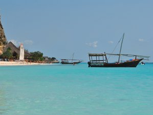 7 Days: Zanzibar Vacation and Mikumi Wildlife Safari