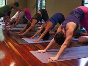 8 Days Iyengar Yoga Retreat in Queensland, Australia