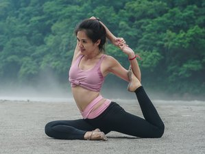 7 Day Capital Sightseeing Yoga Holiday in Rishikesh