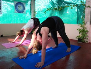 5 Days Nada Mantra Yoga Retreat in Kerala, India