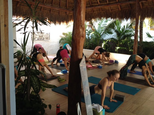 24 Days 200-Hour Yoga Teacher Training in Mexico