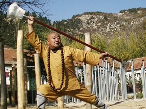 8 Months Martial Arts and Kung Fu Training with Weapons in Shandong, China