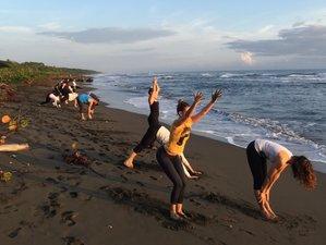 15 días, 200 horas profesorado de yoga en Cahuita, Costa Rica