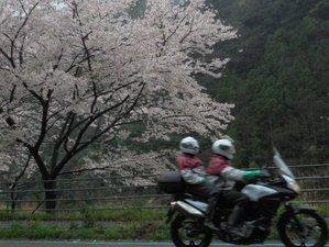 7 Days Mount Fuji and Mount Koya Japan Guided Motorcycle Tour