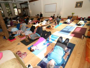 18 Days Integrated Yoga Teacher Training in Auckland