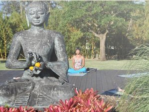 8 Days in Paradise Yoga Retreat Mexico