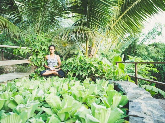 5 Days Ayurveda Yoga Retreat in US Virgin Islands