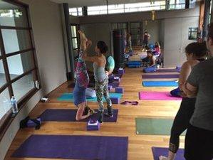 4 Tage Herbst Yoga Retreat in Massachusetts, USA