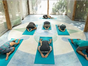 3 días de escapada de yoga en Tulum, México