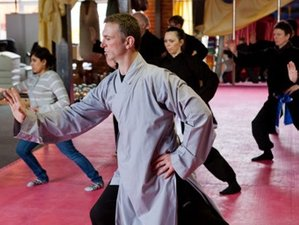11 Days TaiJi, Qi gong & Shaolin Healing Camp in India