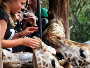 7 Days Remarkable Safari in Kenya