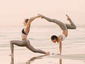 8 Days Aim Your Arrow Empowerment Yoga Retreat in New Zealand