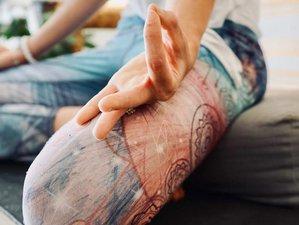 Self-Paced 108 Hour Online Meditation Teacher Training