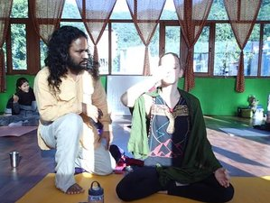7 Days Beginner Yoga Retreat in Rishikesh, India