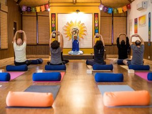 6 Day Ayuryog Shodhan-Ayurvedic Detox Yoga Retreat in Rishikesh