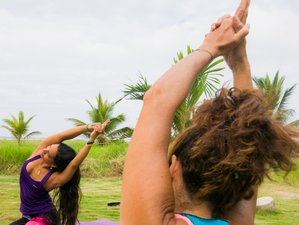 8 Days Vikara Transformational Surf and Yoga Retreat in Olon, Ecuador