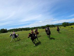 8 Day Krka Trail Riding Wild and Unspoiled Croatian Countryside