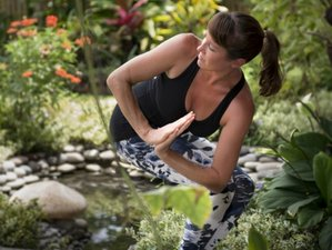 5 Days Ashtanga and Vinyasa Yoga Retreat in Balian Beach,Bali