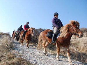 3 Day Budget Horse Riding Holiday for Advanced Riders in Hanstholm
