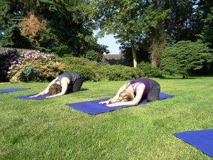 3 Day Beautiful Meditation and Yoga Silence Weekend in Twello, Gelderland