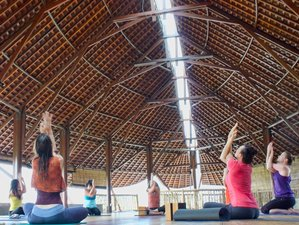 11 Day Balancing Yoga Holiday in Bali and Lombok, Indonesia