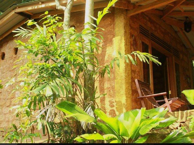 14 Tage Gewürz Wald Yoga Retreat in Kandy, Sri Lanka