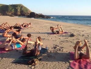 5 Days Surf Camp and Yoga Retreat in Mexico