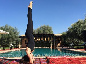 7 Day Yoga and Tea Ritual and Renewal Holiday in Marrakesh, Marrakesh-Safi
